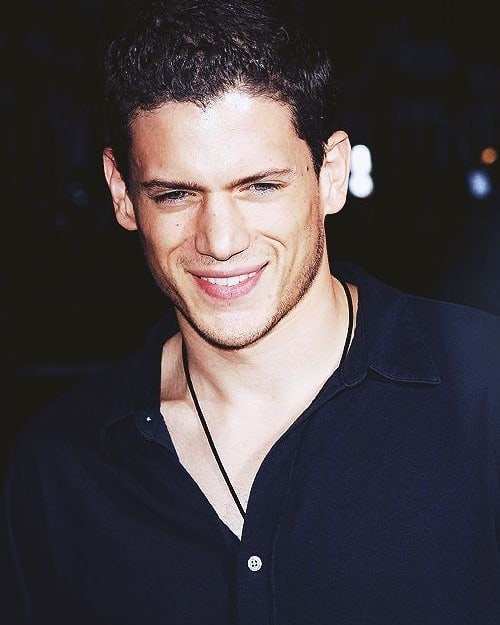 is Wentworth Miller a gay